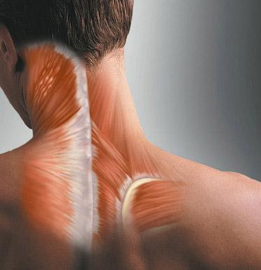 اسپاسم گردن | Sport-lavasan